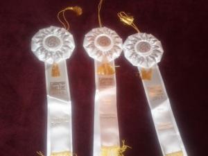 cal state fair 2013